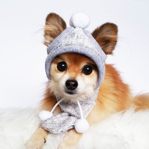 Dogs Winter Hat Scarf Set HANDMADE dog hats dog caps | Et