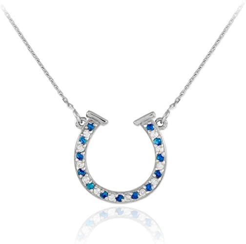 Amazon.com: 14k White Gold Diamond & Blue Sapphire Good Luck Charm .