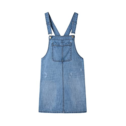 Denim Overalls Dress: Amazon.c