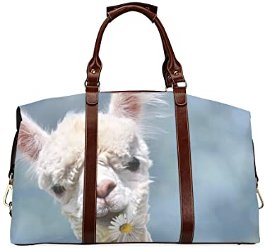 Amazon.com: Girls Handbags A Cute Smart Pretty Alpaca Classic .