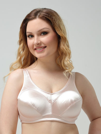 China Thin Cup Plus Size Bra with Underwire - China Plus Size Bra .
