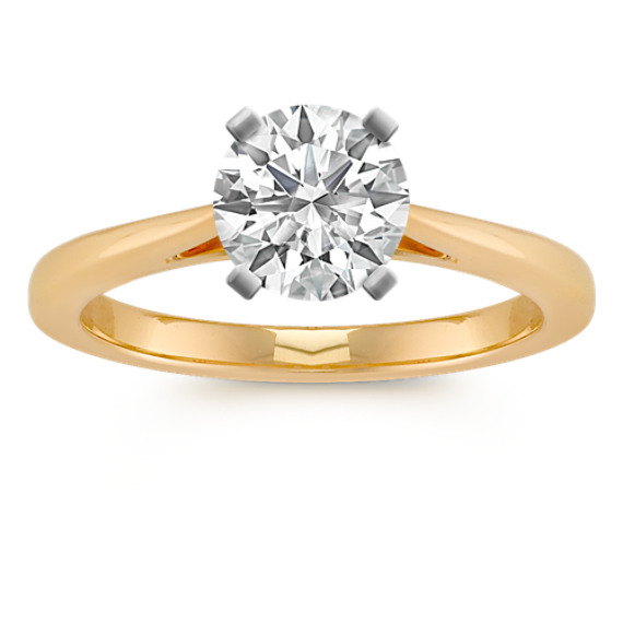 14k Yellow Gold Cathedral Engagement Ring | Shane C