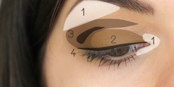 Makeup 101: Eyeshadow Basics - Loeps