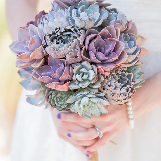 The 7 Best Succulents for Wedding Arrangemen