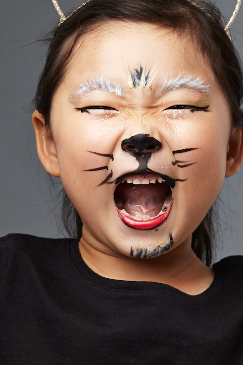 35 Halloween Face Paint Ideas - Fun Face Painting for Kids & Adul