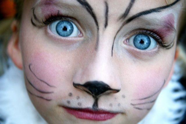 Pin by Laurie O'Neill on Halloween costumes | Kitty face paint .