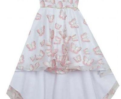 Girls Gorgeous Butterfly Gown 2T to 6X Now in Stock (With images .